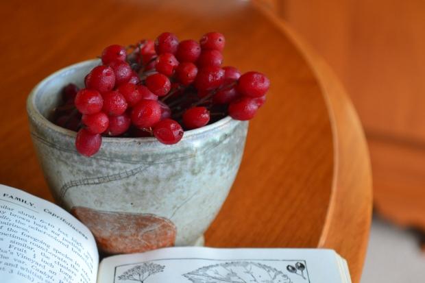 highbush cranberry bowl2